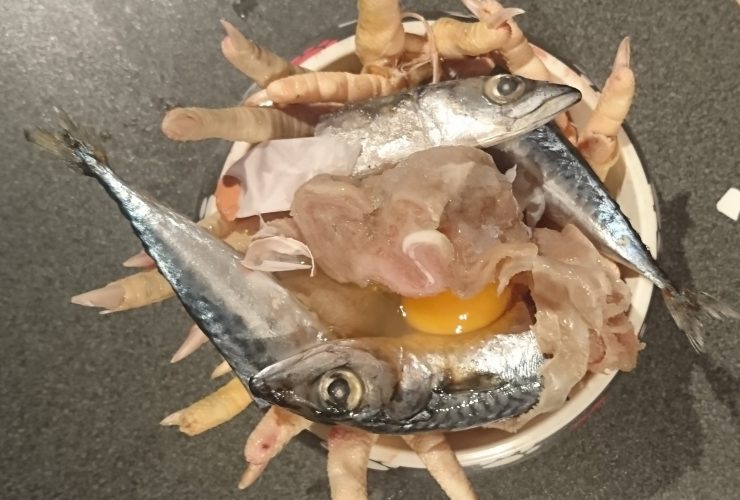 lamb-tripe-mackerel-chicken-feet-and-egg