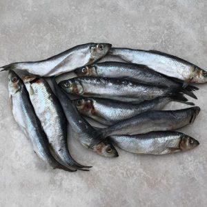 PR Fish Complete 1kg