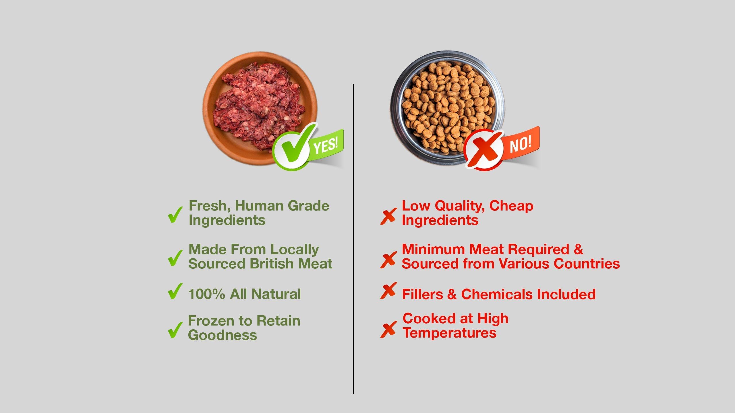 why should I raw feed my dog